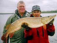 Big Northern Pike